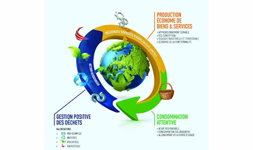 Lutte contre le gaspillage et économie circulaire : dispositions en matière de consommation
